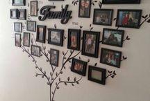 arbre photos