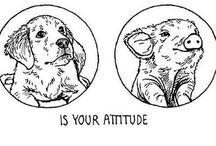 jedinim rozdielom je vaš postoj