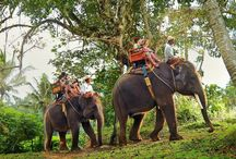 Thailandone day