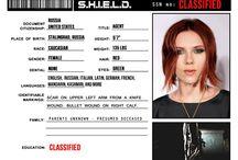 Shield personell files