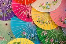 Umbrellas/Sunglasses/Fans/Hat / by BecBelle