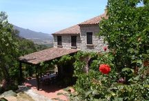 Corse - Chambres d'hôtes et Gîtes Fleurs de Soleil / Chambres  d'hôtes  et gîtes Corse Fleurs de Soleil France .