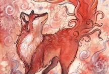 《 Fox 》
