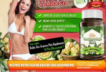 """Acheter Garcinia Cambogia / Le Garcinia Cambogia est un petit fruit en forme de citrouille originaire des régions chaudes et tropicales de l'Asie, l'Australie et la Polynésie, traditionnellement utilisées pour faire curry. Récemment, des scientifiques modernes ont surnommé le Garcinia Combogia la """"percée de la perte de poids """" du siècle."""