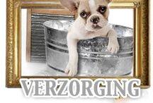 Verzorging / Wie houd er nou niet van een goed bad ? verzorging voor kat en hond