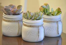 vasetti piante grasse