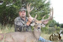 Oak Creek II Harvest 2011