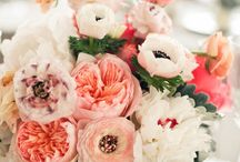 Peach Wedding Ideas / Peach inspiration for peach themed weddings and parties. / by Dress for the Wedding