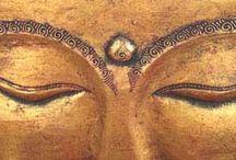 Wisdom eyes