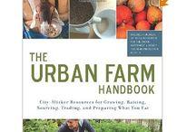 Urban Gardening Obsession