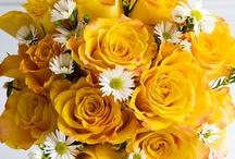 FLOWERS / by Amanda Jones