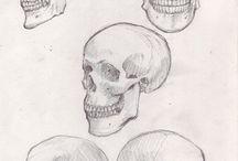 Картинки черепа
