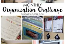 Delightful Order Monthly Organization Challenge / Want to get organized in 2016?  This Challenge will help you to create a cleaner, more organized home and life. Join me and be sure to share this challenge with others. Find even more organizing inspiration on the blog: http://blog.delightfulorder.com / by Delightful Order