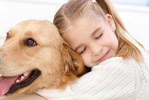 Blog #Mascotas / Todo acerca de las mascotas: Cuidados, beneficios, protección, salud...
