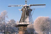 some Dutch glory