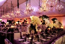 Event Lighting / All the possibilities for every special occasion