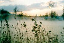 Analiza kolorystyczna: Zgaszone Lato (Soft Summer) / http://arsenicmakeup.blogspot.com/search/label/analiza%20kolorystyczna