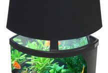 Awesome / Aquarium idea