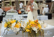 Real Weddings by Vivid Occasions
