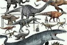 Dinosaur Dynasty..