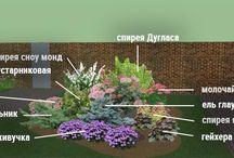 сад, огород, цветник