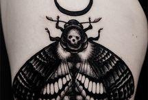 moth tt