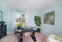 Office Spaces / Great ideas on decorating your work space.