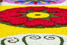żywe dywany