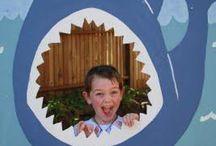 Ryba- žralok