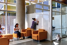 Pierpont Center Project / by Rachel Plybon Beach * Pierpont College-Design