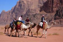 Adventures in Jordan / It's not just desert sands and ancient ruins - for those who are looking for adventure and adrenaline we have you covered!