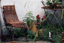 Back Courtyard Ideas