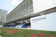Stamford American International School of Singapore