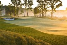 Fore! Golfing At Harbor Shores / As the host of The Senior PGA Championship presented by KitchenAid, Harbor Shores has become a premier destination for golfers throughout the Midwest. Stay up to date on course info, tee times and other golf news here.