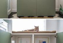 miejsce dla kota w pralni