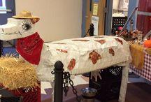 Student Wellness Blog- Pasco County Schools