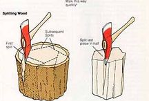 Woodharvesting (Holzarbeit Wald )