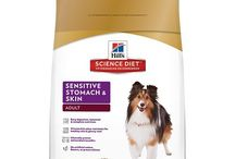 Best Dog Food for Sensitive Stomach / If your dog has a sensitive stomach, they suffer when they eat the wrong foods. Make sure that you give your dog the best dog food for sensitive stomach.  Read our reviews here: https://www.munch.zone/best-dog-food-for-sensitive-stomach/  ----------  Disclosure:  The Munch Zone is a participant in the Amazon Services LLC Associates Program, an affiliate advertising program designed to provide a means for sites to earn advertising fees by advertising and linking to amazon.com.