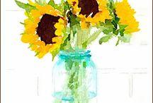 Sunflowers & more