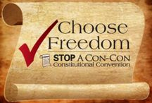 Stop A Con-Con (Constitutional Convention) / Many view a con-con as a quick way to pass amendments they think will stop the big-government juggernaut. Why would politicians suddenly start following an amended Constitution after ignoring and violating the Constitution for so long? The remedy so desperately needed to return our country to good government is to enforce the Constitution, not amend it.
