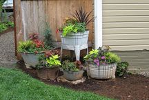 Yard and Garden Ideas / by Debbie Aldridge