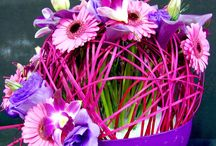 kwiaty kompozycja