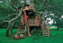 Tree House / by Grace Paradise