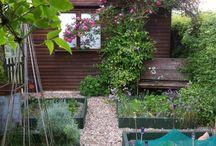 veg gardens