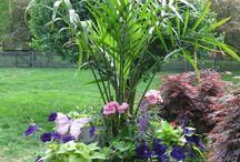 Κηπουρική
