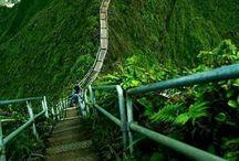 Oahu Living