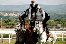 Events in Sardinia / Discover  Sardinia  with us, start a magic trip into a magic isalnd