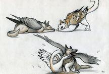 Летающий пёс и Кото-сова