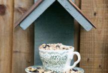 Backyard:  For the Birds / by Georgiann Coons
