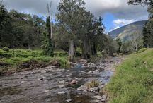 Queensland: Camping